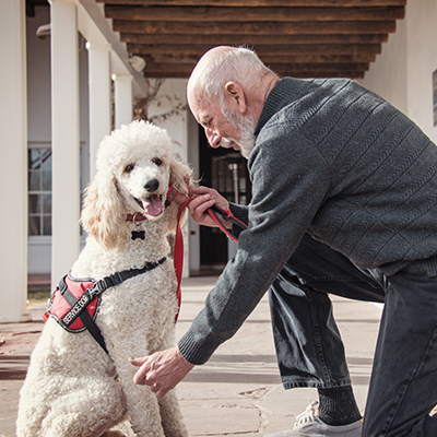 Mississippi CE:Assistance Animals And Fair Housing
